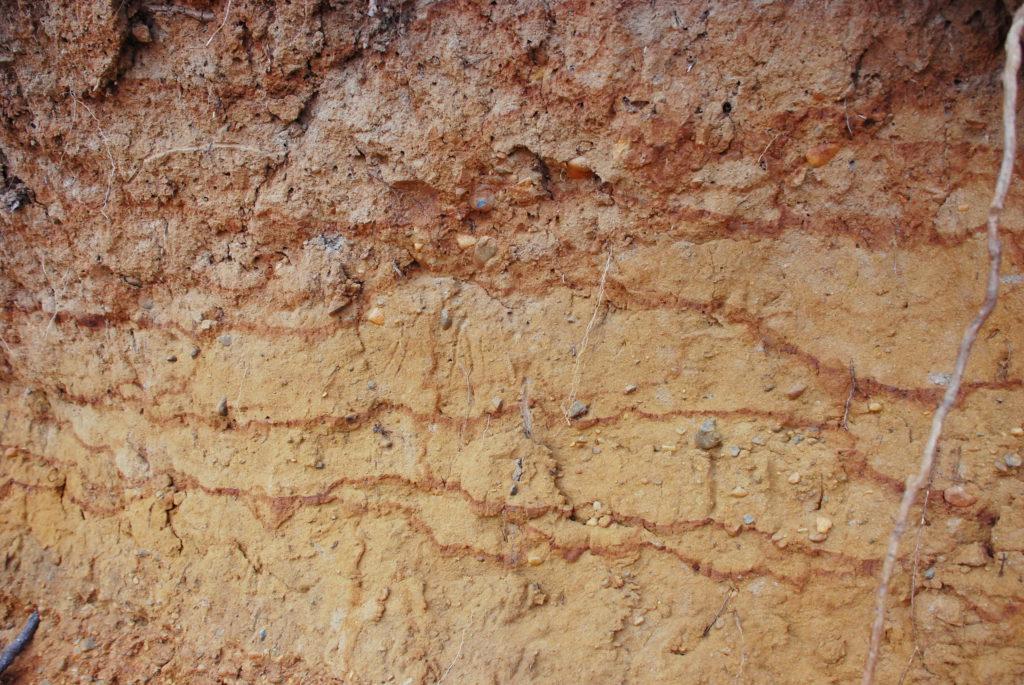 Какими бывают глинистые почвы